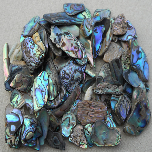 PAUA SHELL CHIPS